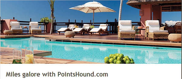 etihad-pointshound