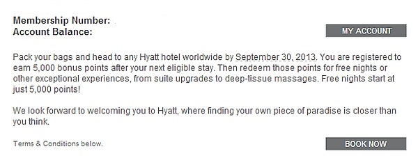 hyatt-summer-2013-promo-text-2