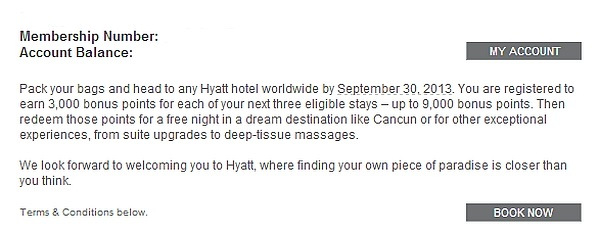 hyatt-summer-2013-promo-text