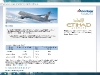 American Airlines Etihad Earnings Structure
