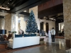 westin-abu-dhabi-golf-resort-spa-lobby-christmas-tree