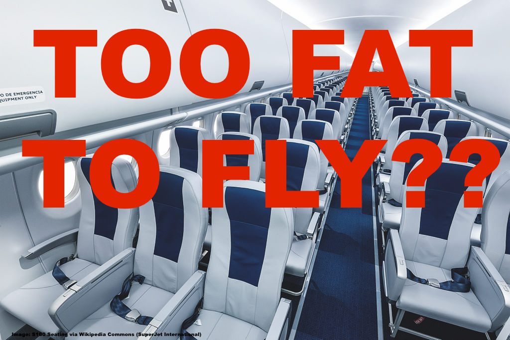 Reader Question Person Of Size Obese Passenger Spills