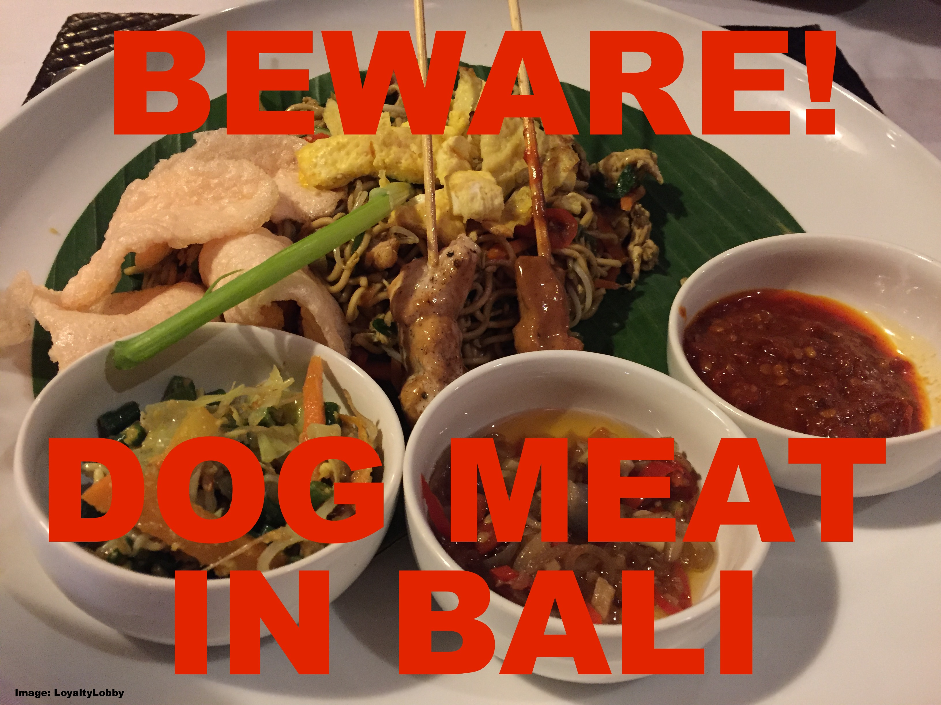 Dream Holiday In Bali Beware Of Dog Meat Satay Sometimes