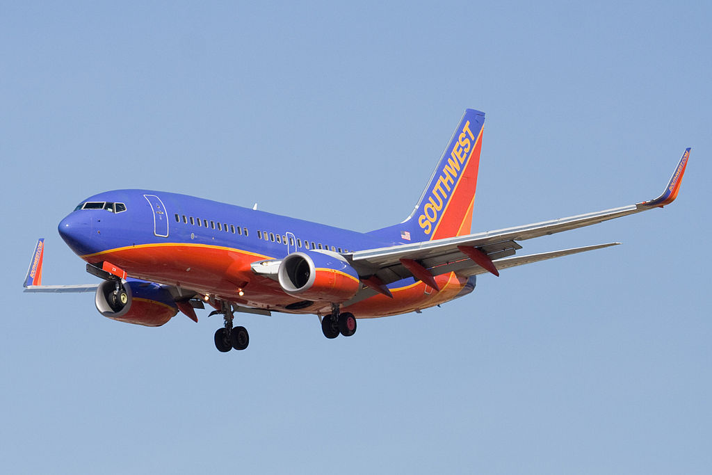 Emotional Support Dog Bites Child On Board A Southwest Airlines